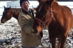 man with two brown horses